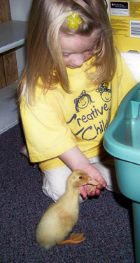 Creative Child Learning Center: Preschool in Appleton, WI